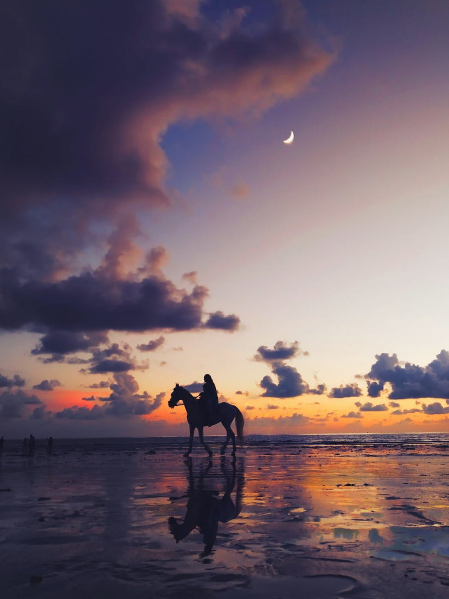 silhouette photo of person riding on horse under twilight sky
